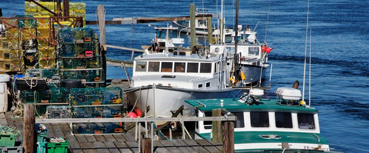 Annies Taxi has tours to see the working waterfront of Seacoast and Portsmouth NH